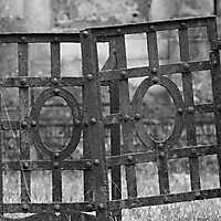 Heger Friedhof Februar 2017-056