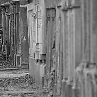 Heger Friedhof Februar 2017-059