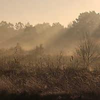 171015 • Sonnenaufgang • Vennermoor
