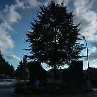 DSC_0248[1]